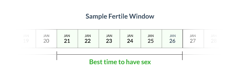Age impact on Fertility Statistics