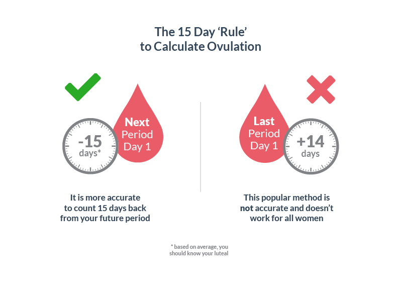 Ovulation normally occues 15 days before your period
