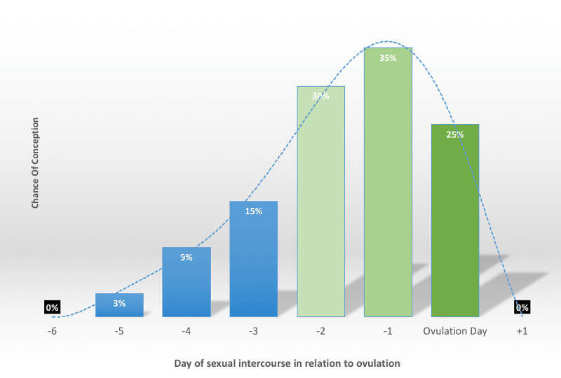 Chances of conception in relation to ovulation