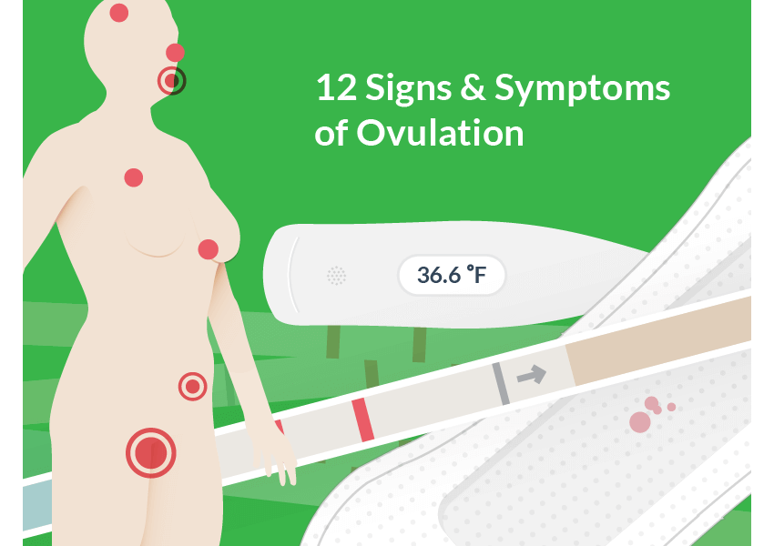Ovulation Signs - Featured Image